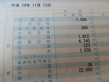 PB162708.JPG